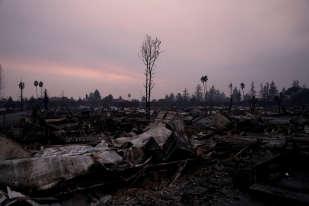 A cause de «vents extrêmes de plus de 90 km/h », «nous nous attendons à ce que les destructions accélèrent» et à plus de morts, a prévenu le gouverneur de Californie, Jerry Brown, qui a déclaré l'état d'urgence dans huit comtés.