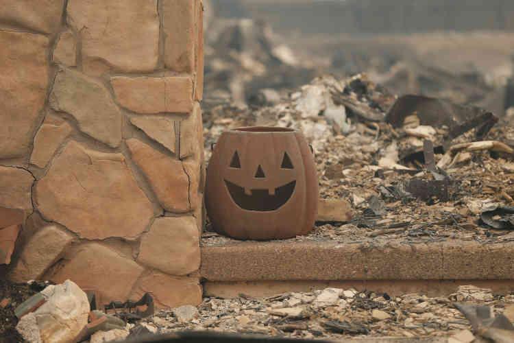 Dans le seul comté de Sonoma, plus de 25000 personnes ont été chassées de chez elles et 5000 ont trouvé refuge dans des abris temporaires, avait indiqué lundi le bureau du shérif. La ville de Santa Rosa est particulièrement meurtrie, mais les vignobles font aussi les frais de ces feux.