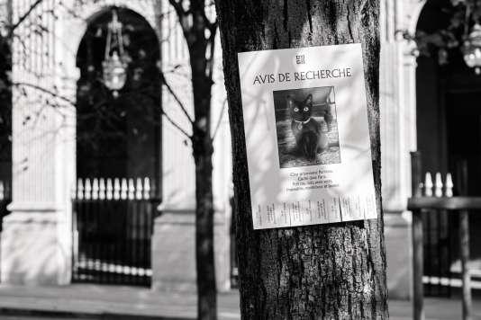 La campagne de pub de Givenchy.
