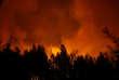 Une forêt en flammes près de Lousa, au Portugal, le 16 octobre 2017.