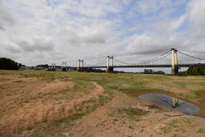 La sécheresse, comme ici dans le lit de la Loire à Montjean-sur-Loire en septembre, fait augmenter le taux de pesticides dans l'eau.