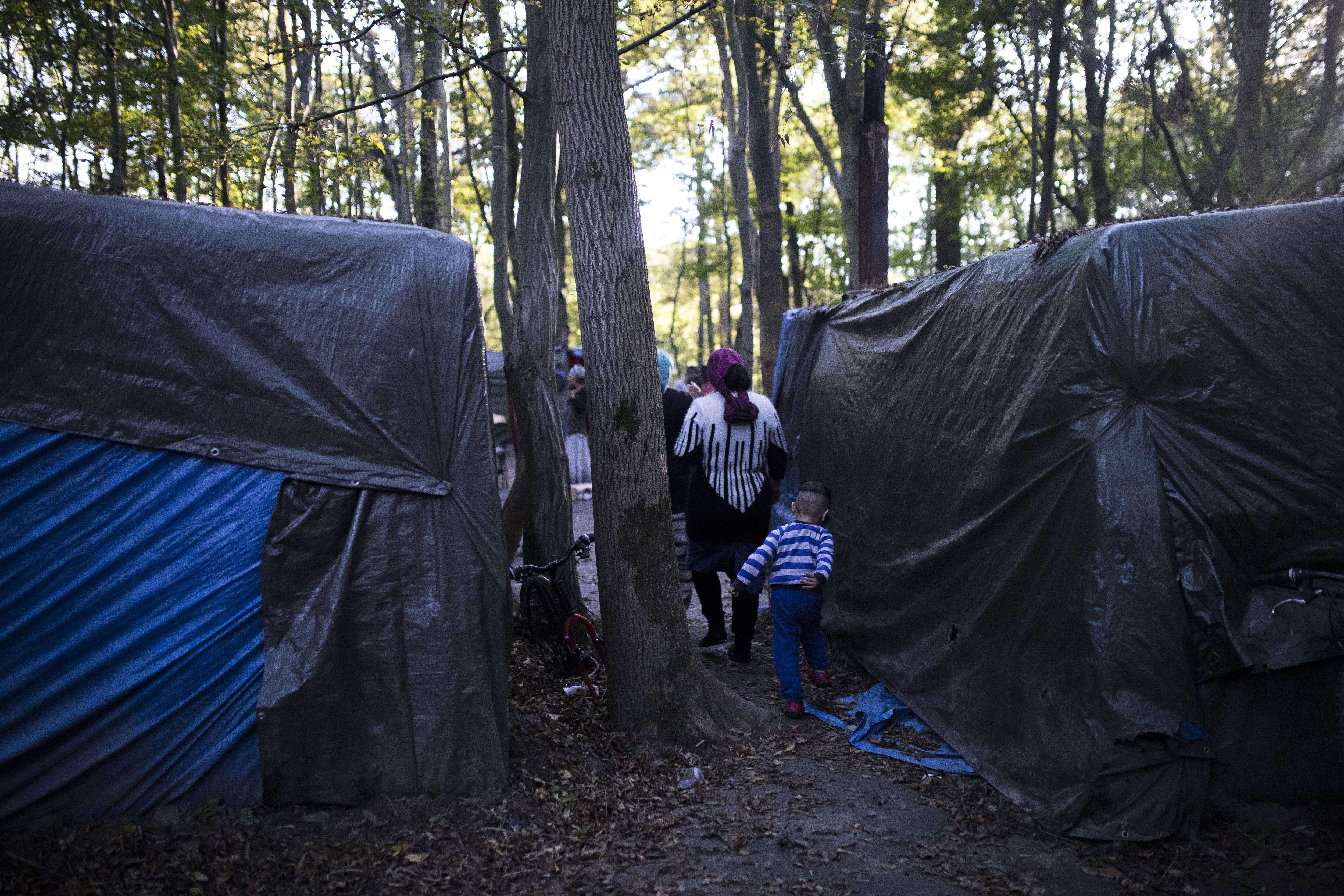 Dans ces bicoques de la forêt entre Noisiel et Noisy-le-Grand, des pères, des mères, des enfants se battent depuis l'été pour survivre, avec au-dessus de leur tête l'épée de Damoclès de l'expulsion.
