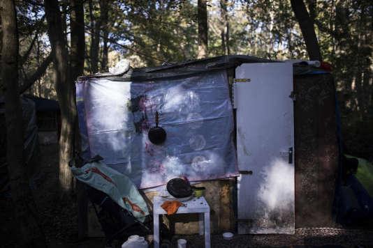 Une baraque rom dans les bois à Champs-sur-Marne (Seine-et-Marne), le 14 octobre.