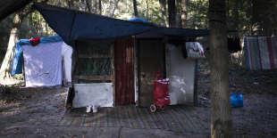 Une baraque Rom dans la forêt entre Noisiel et Noisy-le-Grand (Seine-Saint-Denis), le 14 octobre.