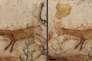 Entre 2008 et 2017, la dégradation due à un champignon (taches noires, en haut) sur le petit cerf rougede la salle des Taureaux a pu être éradiquée. DRAC NOUVELLE -AQUITAINE