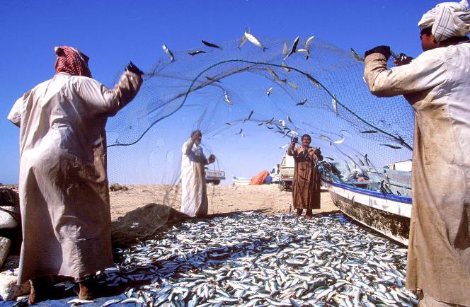 La pêche est restée largement traditionnelle à Mascate.