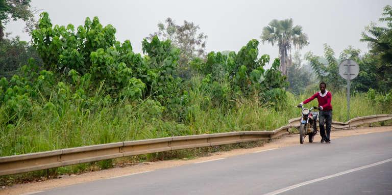 Sur une route du Cameroun, en février 2014.