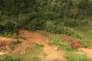 Extrait d'une video.En Guyane, le site du projet de mine« Montagne d'or».