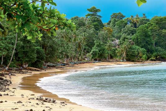Des plages désertes voisinent avec une nature luxuriante.
