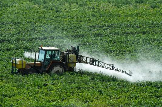 Le glyphosate, très utilisé par les agriculteurs, représente 25 % du marché mondial des herbicides.