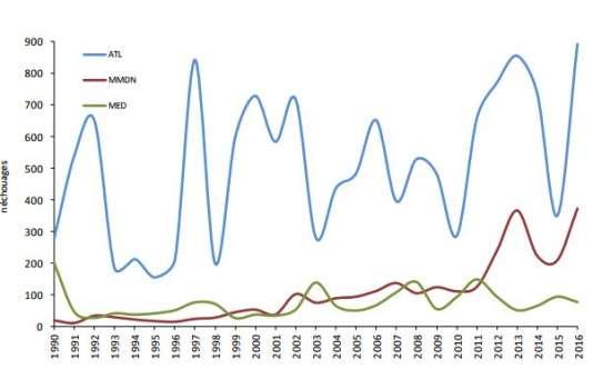 Distribution annuelle des 18533échouages de cétacés entre 1990 et 2016 répartis parfaçade (en bleu, atlantique ; en rouge, Manche et mer du Nord ; en vert, Méditerranée).