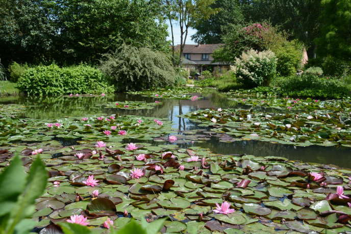 Le jardin André van Beek.