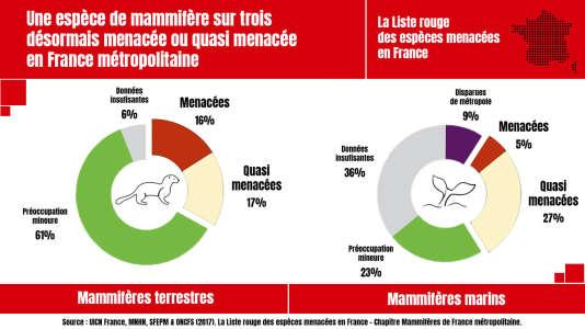 Une espèce de mammifère sur trois est menacée ou quasi menacée en France métropolitaine.