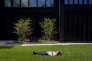 Pause sieste en plein air à Londres, sous le soleil de juillet.