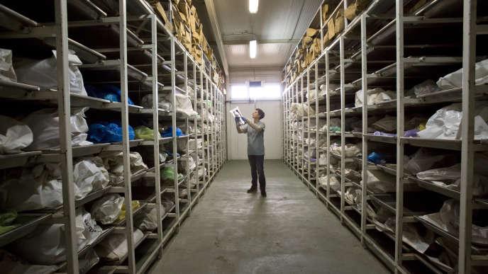 A Tuzla, en Bosnie, l'ADN extrait des restes humains entreposés sert à identifier les victimes de la guerre en ex-Yougoslavie.