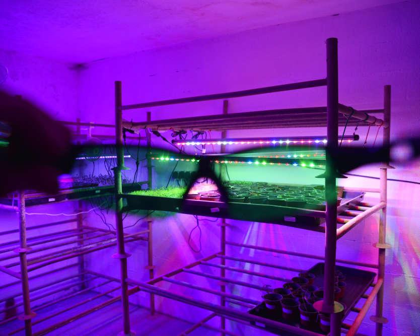 sous les hlm de la chapelle paris une ferme bio dans un parking souterrain. Black Bedroom Furniture Sets. Home Design Ideas