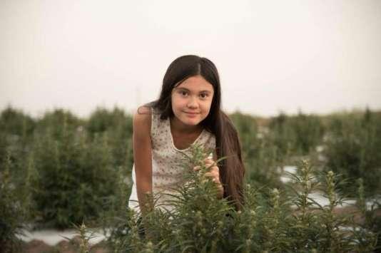 A cause de la législation répressive sur le cannabis au Texas, Alexis Bortell ne peut pas retourner dans cet Etat, au risque d'être arrêtée pour avoir transporté une substance illégale.