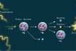 Réaction nucléaire induite par la foudre: le rayonnement gamma arrache un neutron d'un atome d'azote, créant un isotope instable, qui se désintègre en carbone 13, un neutrino et un positron. Celui-ci s'annihile en présence d'un électron, produisant une paire de rayons gamma d'une énergie particulière.