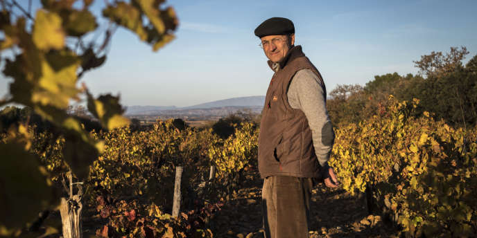 Le propriétaire Emmanuel Reynaud, au milieu des 110 ha de vignes du Château Rayas, à Chateauneuf-du-Pape.