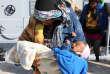 Des migrants secourus par les gardes-côtes libyens après un naufrage, le 24 novembre à Tripoli