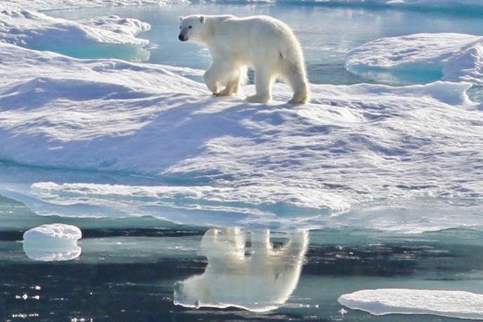 «15 000 scientifiques du monde entier nous disent que le temps presse, qu'il sera bientôt trop tard, qu'à ce rythme, nous n'atteindrons pas l'objectif de maintenir le réchauffement climatique en dessous de 2 °C d'ici à la fin du siècle.»