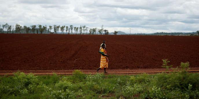Une exploitation agricole près de Harare, au Zimbabwe, le 28novembre 2017.