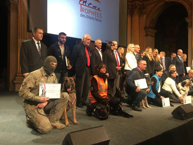 Les chiens récompensés accompagnés de leur maître, le 7 décembre à Paris.