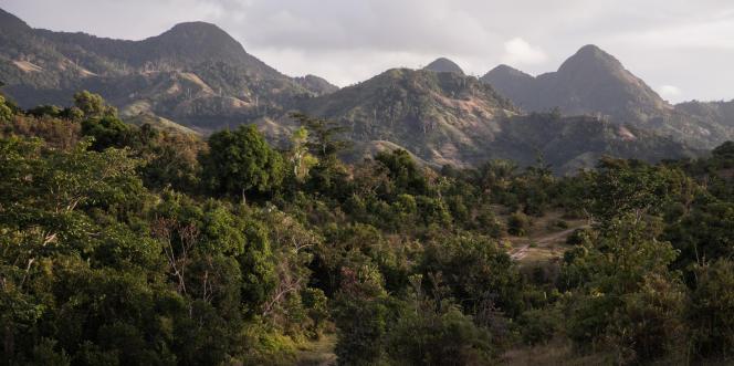 Engoncée dans une forêt impénétrable et entourée d'une centaine de kilomètres de piste peu praticable pendant la saison des pluies, la ville d'Ikongo est difficile d'accès.
