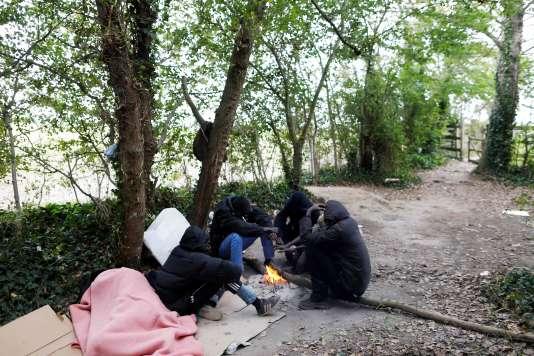 Migrants soudanais s'abritant dans une forêt près d'Ouistreham (Calvados), le 5 octobre.