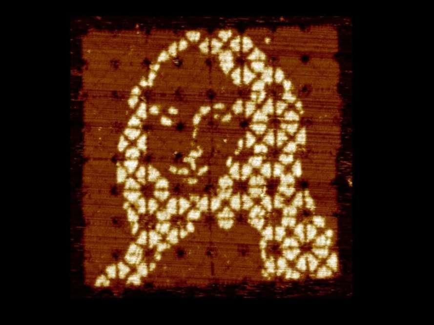 Cette Mona Lisa de 600 nanomètres de côté environ est faite de minuscules tuiles d'ADN, collées les unes aux autres par autoassemblage. Conçu par une équipe du California Institute of Technology (Pasadena) et présenté dans Nature le 7décembre, cet origami illustre la capacité de faire de l'ADN un matériau de construction microscopique, facile à modeler, y compris en trois dimensions, pour concevoir à façon des dispositifs de la taille d'une bactérie.