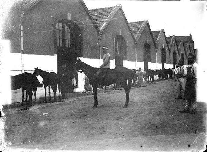 Maréchaux-ferrants et chevaux devant les écuries d'un campement militaire