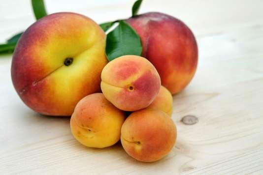 Si le fruit est défendu, c'est qu'il contient du sucre.