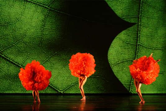 « Viva Momix Forever», de Moses Pendleton au Théâtre des Champs-Elysées.