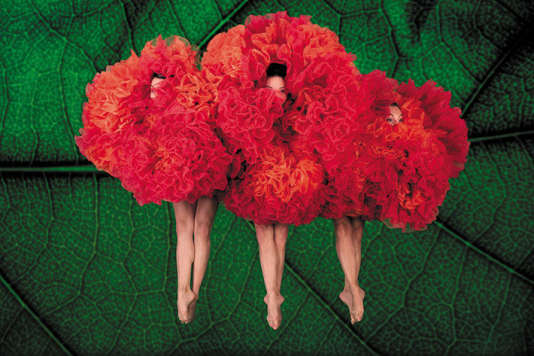 «Viva Momix Forever»,de Moses Pendleton, au Théâtre des Champs-Elysées, Paris, jusqu'au 7 janvier.