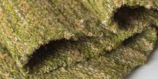 Prototype d'étoffe réalisée à base d'algue.
