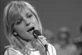 Deneuve, Montebourg, Orsenna... Trente personnalités racontent leur «chanson d'amour»