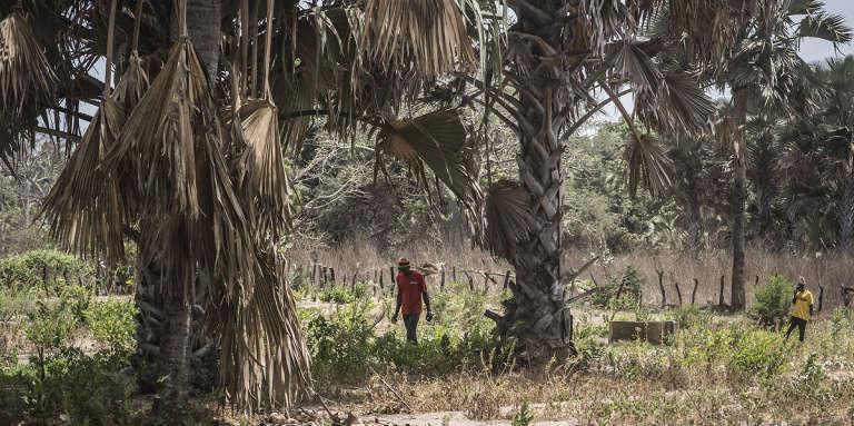 A Kouram, un village situé non loin d'un camp de combattants indépendantistes du MFDC, en Casamance, dans le sud du Sénégal.