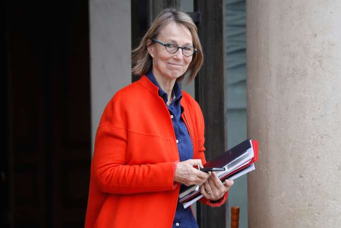 Françoise Nyssen, sur le perron de l'Elysée, le 20 décembre 2017.