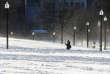 La vague de froid sur l'Amérique du Nord a favorisé la hausse du cours du pétrole.Boston (Massachusetts) bloquée par la neige, le 5 janvier.