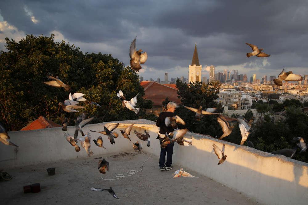 Une femme, dans son rituel quotidien, nourrit des oiseaux au coucher du soleil.
