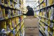 «Amazon a fort bien compris ces complémentarités. L'enseigne compte offrir dans ses nouveaux magasins ce qu'il ne peut pas offrir sur Internet (le voir, le toucher, le sentir), en tirant parti de son fichier clients, le plus important au monde»