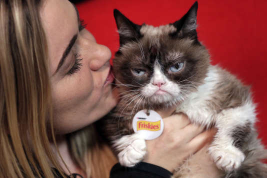 Grumpy Cat avec sa propriétaire, Tabatha Bundesen, en2016.