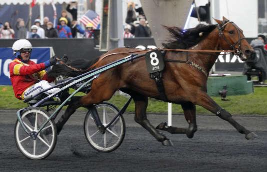 Le n° 8 Readly Express, drivé par Bjorn Goop, remporte le 97e Grand Prix d'Amérique, le 28 janvier sur l'hippodrome de Vincennes.