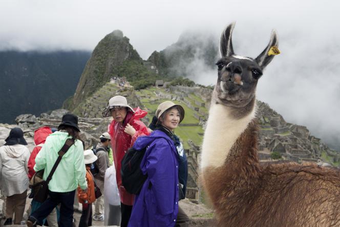 Des touristes à Machu Picchu, ville sacrée inca, au Pérou, en 2008.