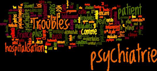 «Plus de besoins dans la population générale, moins de psychiatres hospitaliers pour les prendre en charge et des risques médico-légaux qui peuvent conduire à des procès : tel est actuellement le contexte global.»