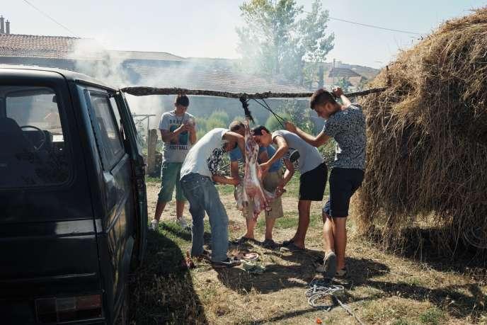 ASkenderaj (Kosovo), en 2014, des adolescents dépècent une chèvre qui sera mangée lors d'un mariage.