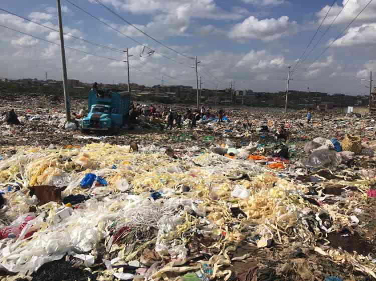 Chaque matin, un énorme camion débarque de l'aéroport avec le « festin», les restes des plateaux-repas servis lors des vols pour Nairobi. Chaque jour, des dizaines d'autres l'imitent avec leurs tonnes d'ordures ras la benne.