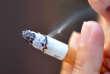 La composition de la fumée du tabac est un vaste maquis de substances dangereuses et/ou cancérogènes.