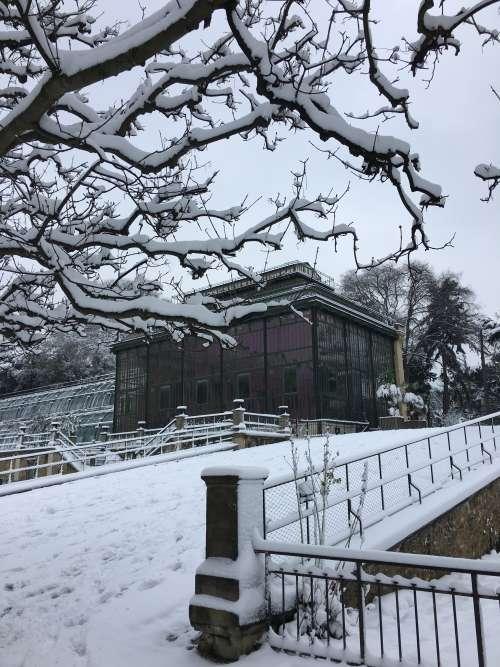 Les exceptionnelles chutes de neige du mois de février ont transformé le Jardin des plantes en... jardin féerique.