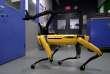 SpotMini, un des robots de Boston Dynamics.